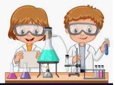 Science Grade 6